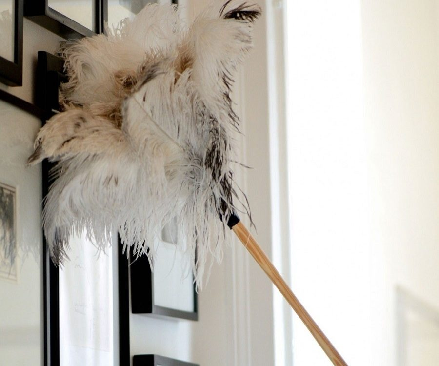 Cleaning with a feather duster